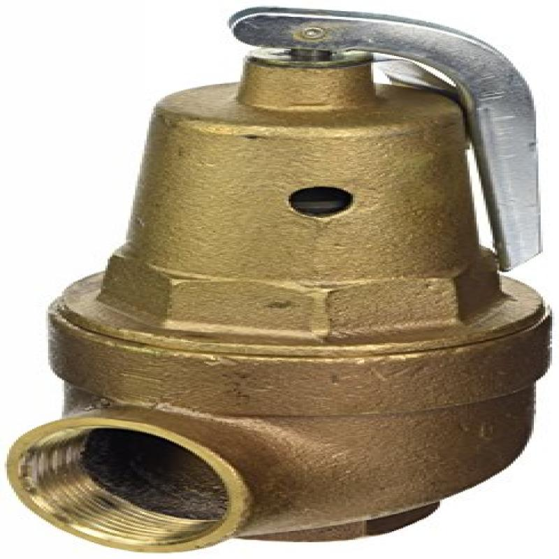 Pentair A0000300 75-PSI Pressure Relief Valve Replacement MT Commercial Pool and Spa Heater