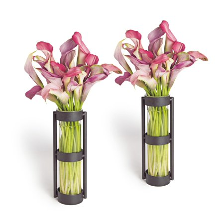 Danya B. Metal Stand Glass Cylinder Vases (Set of 2) ()