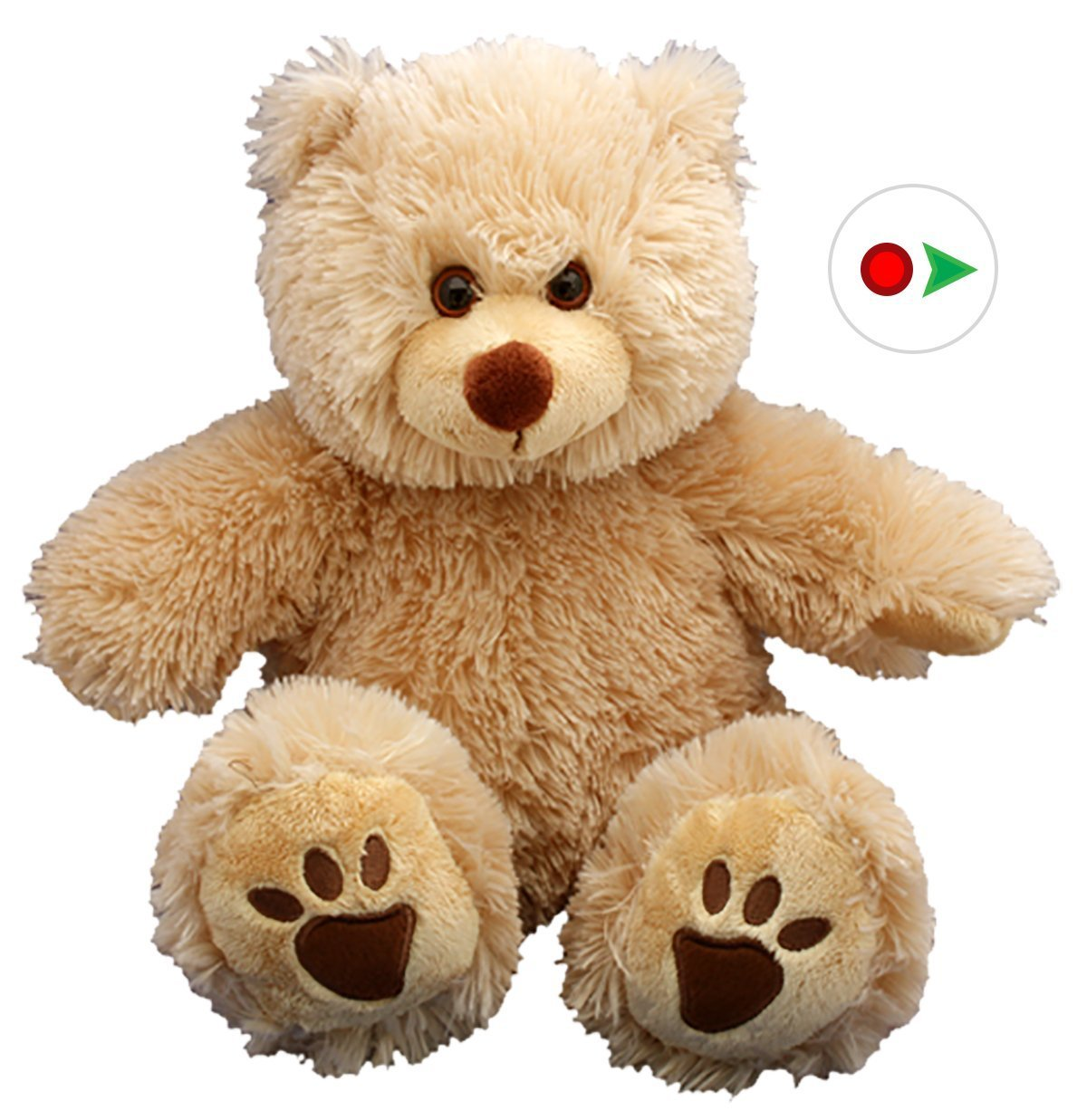 Record Your Own Plush 16 inch Brown Bear - Ready To Love In A Few Easy Steps