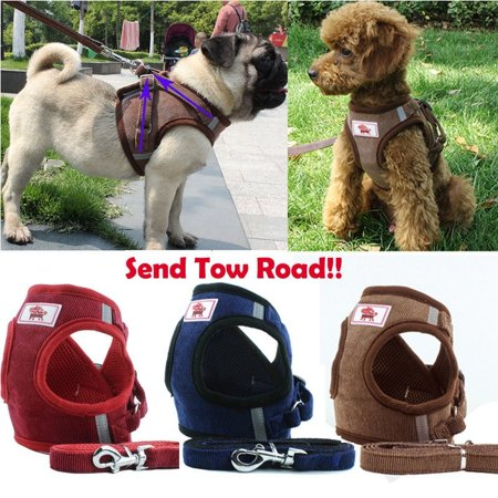Sit Harness (Breathable Air Mesh Small Dog Harness Leash Set Pet Puppy Vest for Walking Dog )