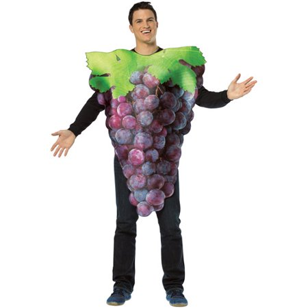 Get Real Bunch Of Purple Grapes Adult Halloween Costume - One Size](Kids Grape Costume)