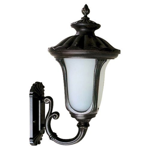 Yosemite Home Decor FL5315UBL Outdoor Wall Light