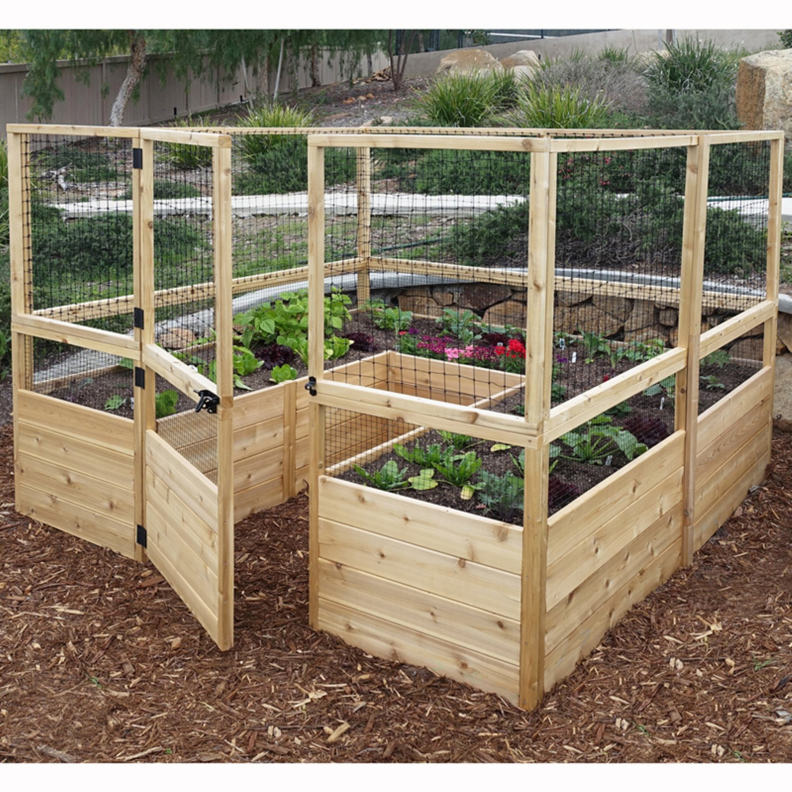 Outdoor Living Today Raised Cedar Garden Bed with Deer Fencing Kit - 8 x 8 ft.
