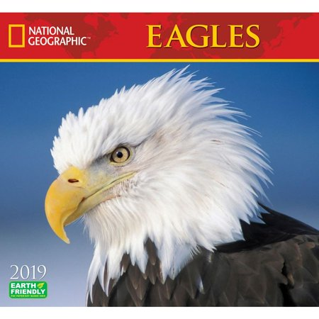 2019 Eagles NG Wall Calendar, Birds by Zebra Publishing
