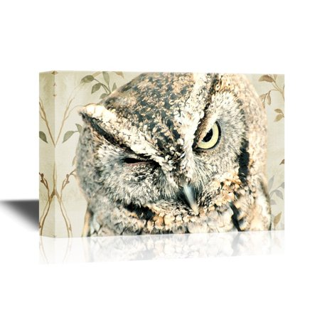 - wall26 Canvas Wall Art - Screech Owl Wink - Gallery Wrap Modern Home Decor | Ready to Hang - 32x48 inches
