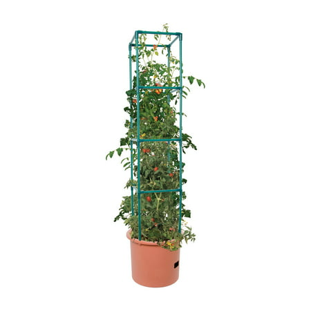 Hydrofarm Heavy Duty Tomato Barrel with Tower ()