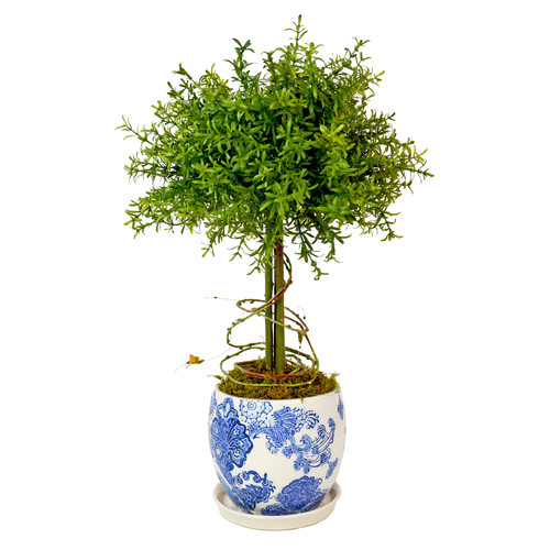 Creative Displays, Inc. Small Leaf Feather Plant Topiary