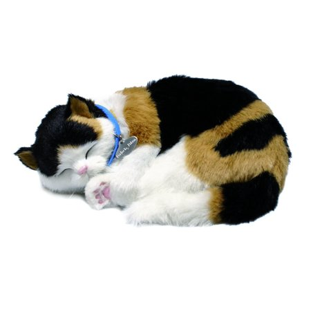 Calico Cat With Interesting Gps >> Calico Cat Toy Walmart Com