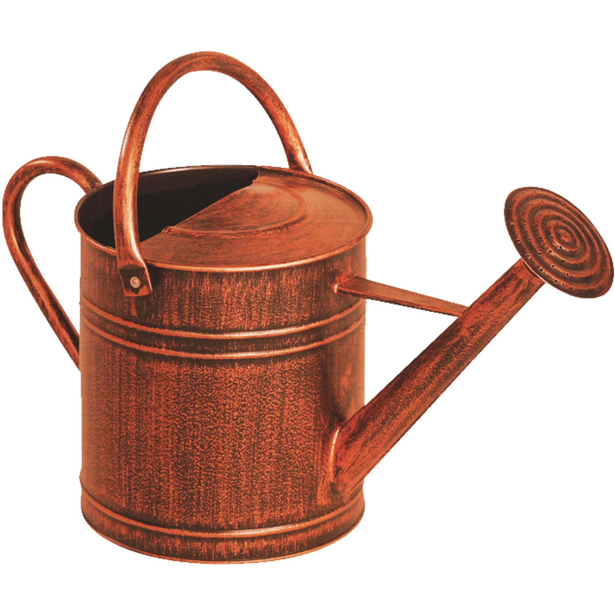 Panacea Brushed Bronze Watering Can