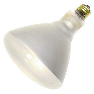 Philips Lighting 140087 BR40 Reflector Incandescent Lamp 65 Watt E26 Medium Base 565 Lumens 2750K White Br40 Incandescent Medium Base