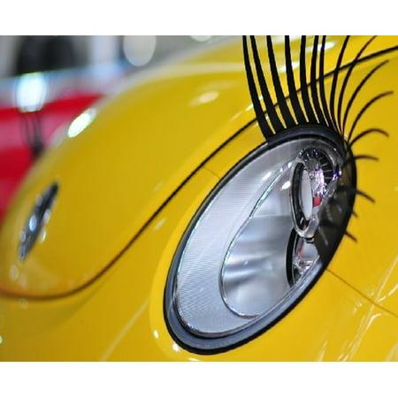 Car Eyelashes Pair Black By Hoolycow Walmart Com