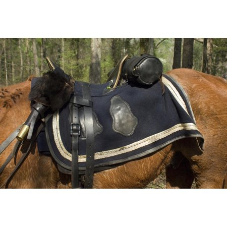 - Union Army Saddle and Blanket, Shiloh National Military Park, Tennessee Print Wall Art
