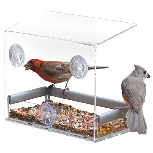 Petfusion Tranquility Window Tray Bird Feeder Walmart Com Walmart Com