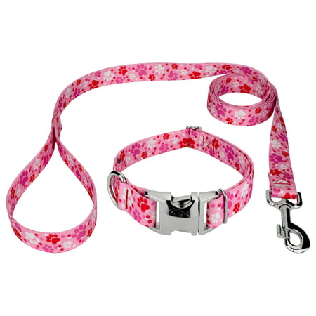 Country Brook Design® Puppy Love Premium Dog Collar & Leash