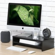 FITUEYES Computer Monitor Riser Stand with Storage Space 21.3 inch 2 Shelves DT205401WB