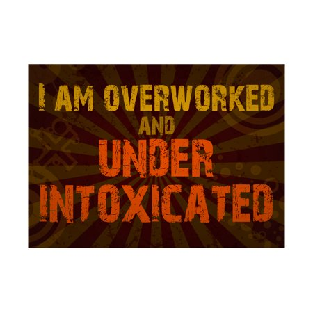 I Am Overworked And Under Intoxicated Print Fun Drinking Humor Bar Wall Decoration Sign  Aluminum - Metal Decorations