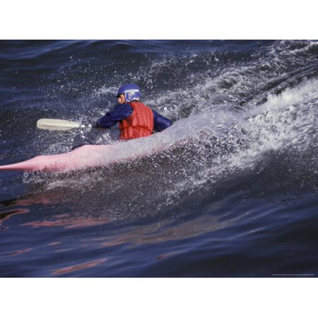Kayak Surfing, Santa Cruz, California, USA Print Wall Art By Stuart