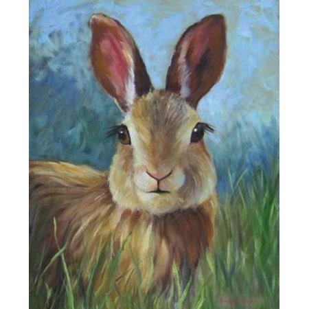 Wild Bunny Rabbit Stretched Canvas - Cheri Wollenberg (10 x 12)