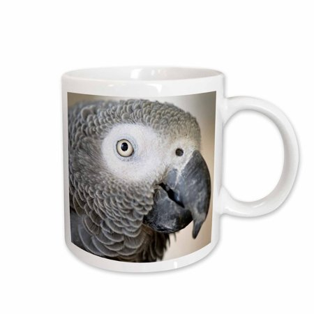 - 3dRose African Grey Parrot tropical bird - NA02 MFR0001 - MFR, Ceramic Mug, 15-ounce