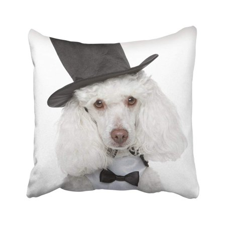 WOPOP Dog Toy Poodle In Black Waistcoat And Hat On White Puppy Alertness Animals Bolero Breed Pillowcase Throw Pillow Cover 18x18 - Dogs Poodle Black And White
