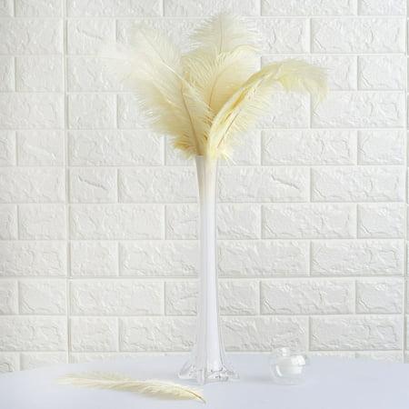 Plume Feathers (Efavormart 12PCS 13