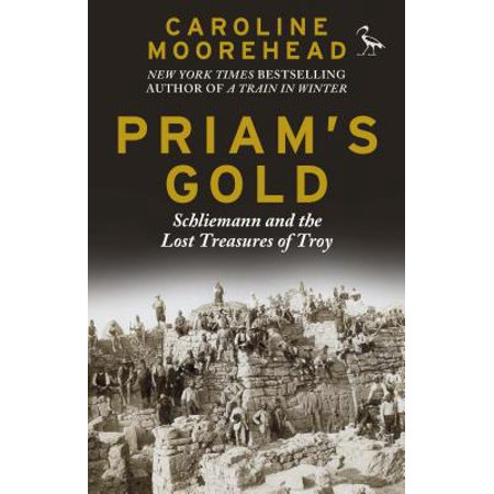 Priam's Gold : Schliemann and the Lost Treasures of