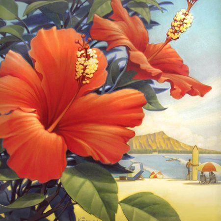 Hibiscus Beach Day Tropical Red Flower Art Print Wall Art By Kerne Erickson