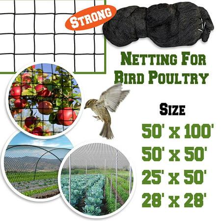 Sunrise 25'x50' Heavy Duty Bird Netting Fruit Tree Protective Net Pens Aviary Poultry Mesh (Bird Netting Fruit Trees)