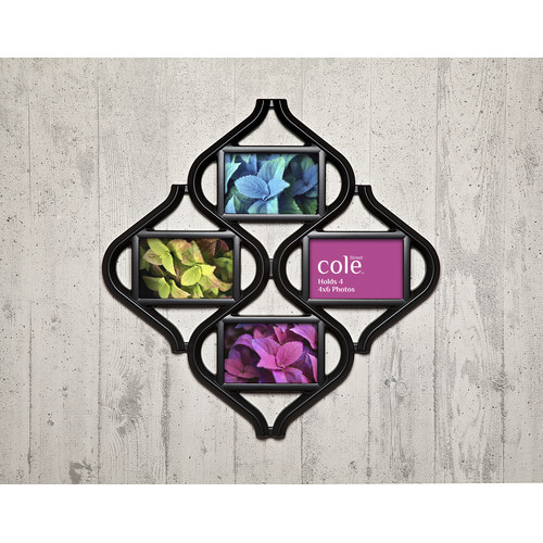 Philip Whitney Inj Ellipse Collage Picture Frame