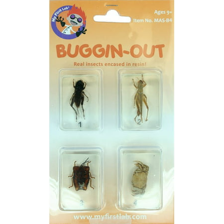 My First Lab, Buggin-Out Micro Fun Bug Set By C A Scientific