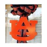 Eagle Wall Hanging (Auburn University Logo Wall Decor Hanging Orange 16