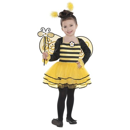 Matching Costumes For Kids (Ballerina Bee - Small, This cute kids bug costume includes a ballerina style dress, matching wings, antennae headband and wand. By Costumes)