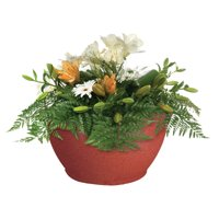 "Bloomers 14"" Porch Planter - Textured Flower Pot and Herb Garden - Terracotta"