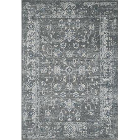 Abani Vintage Style Soft Large Area Rug 8x10, 5x7, 4x6, Turkish, Grey & Ivory