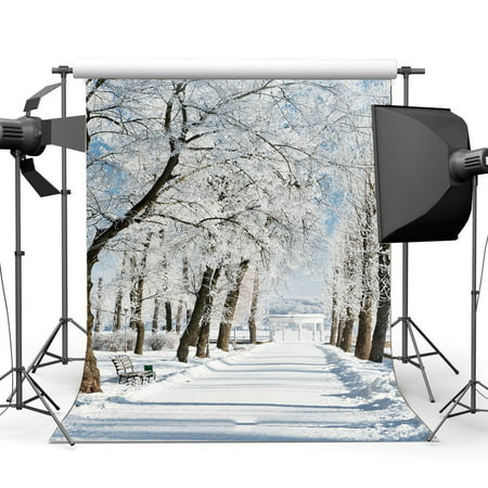 Christmas Scene Backdrop (GreenDecor Polyster 5x7ft Photography Backdrop Christmas Snow Covered Landscape Forest Trees Sunshine Nature Winter Scene Xmas Backdrops Happy New Year Background Baby Kids Adults Photo Studio)