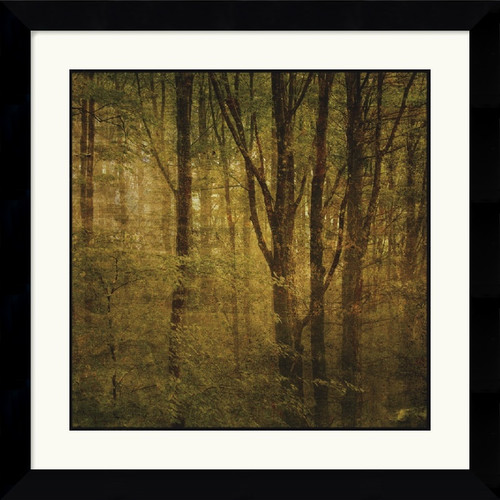 Amanti Art 'Fog in Mountain Trees No. 2' by John W. Golden Framed Painting Print
