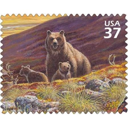 Grizzly Bear Poster Print By  Us Postal Service