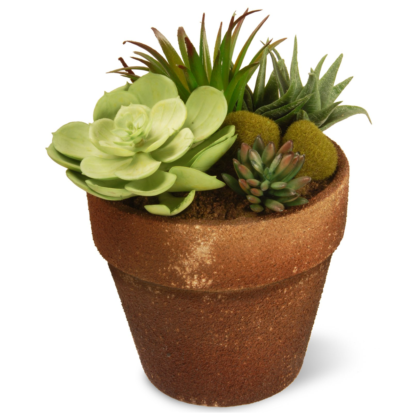 """National Tree Artificial 8"""" Garden Accents Succulent Plant"""