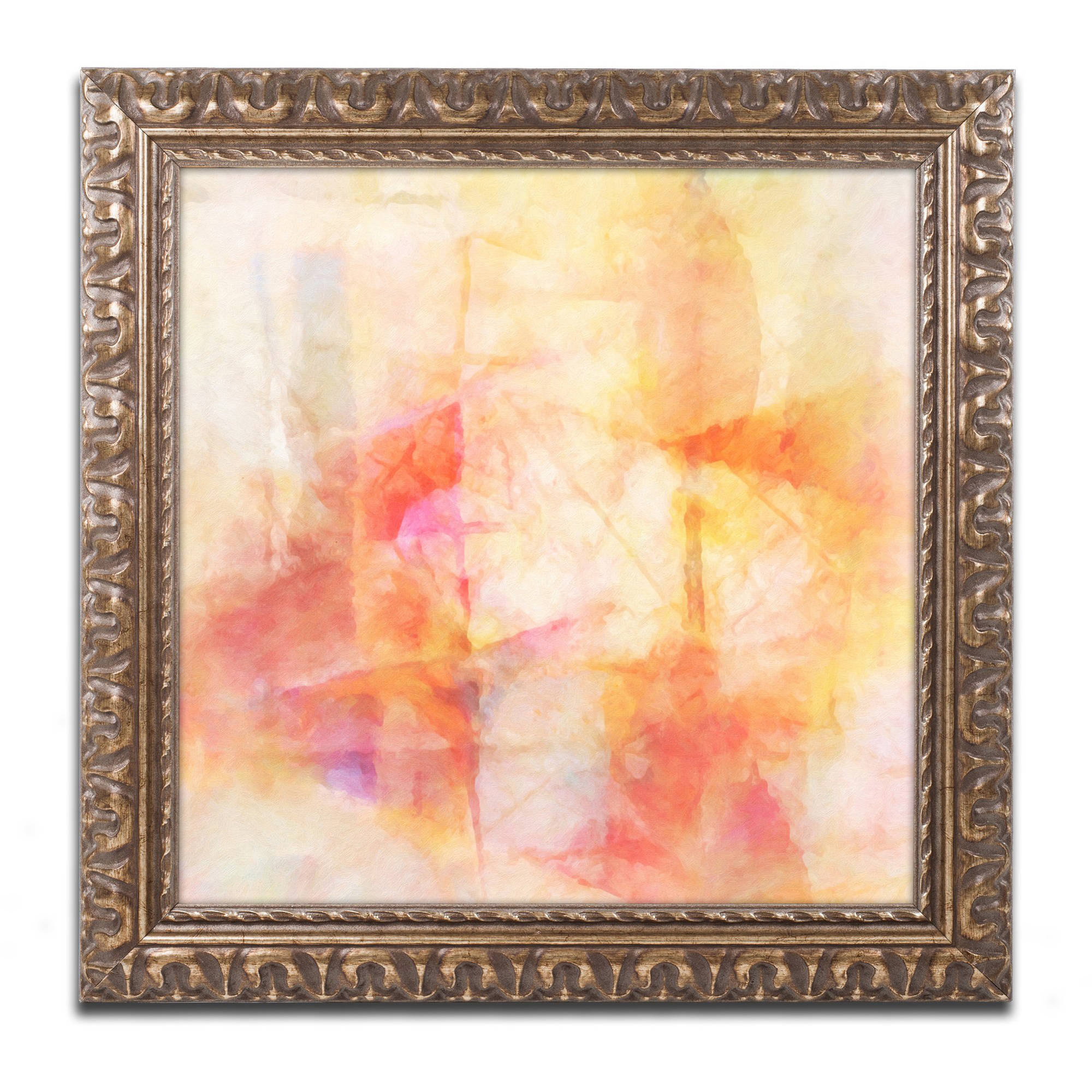 "Trademark Fine Art ""Lightscape"" Canvas Art by Adam Kadmos, Gold Ornate Frame by Trademark Global LLC"