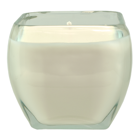 Serenity Lavender - LAVENDER SERENITY 12-OZ. ALL NATURAL SOY CANDLE