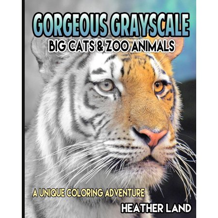 Gorgeous Grayscale: Big Cats & Zoo Animals: Adult Coloring Book (Paperback)