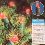 Holiday Time 60 Red LED Mini Lights Holiday String Light Set