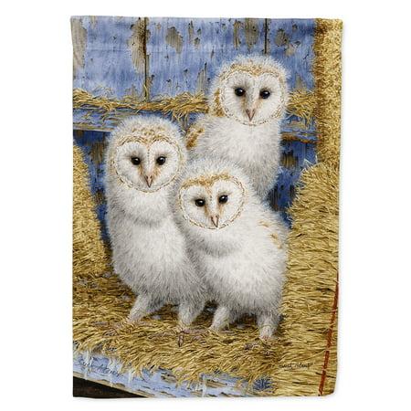 Barn Owl Chicks Flag Canvas House Size - Walmart.com