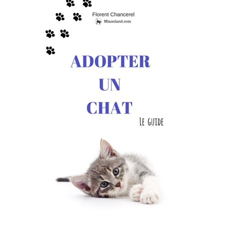 Adopter un chat - eBook - Un Chat D'halloween