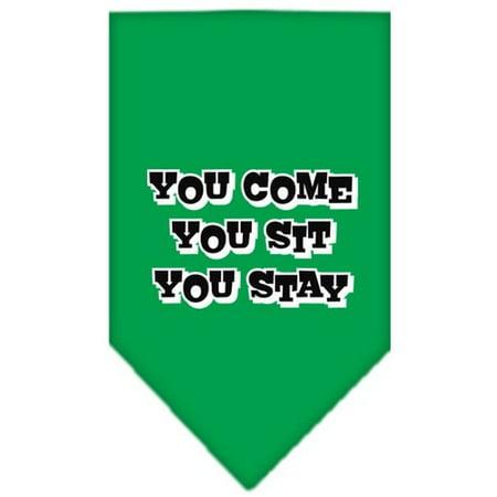 You Come, You Sit, You Stay Screen Print Bandana Emerald Green Small