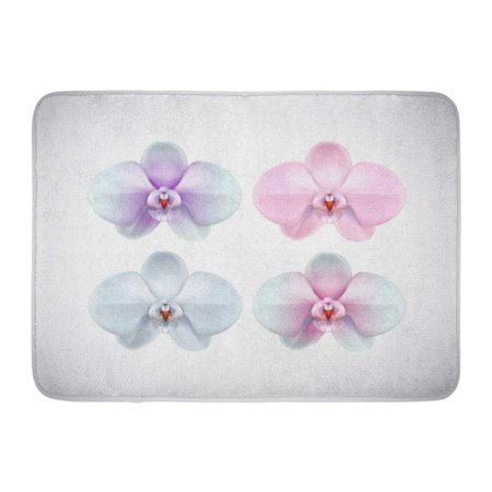 GODPOK Blossom Beauty Beautiful White Pink Purple and Blue Orchid Flower Closeup Collection Bloom Botany Rug Doormat Bath Mat 23.6x15.7 inch