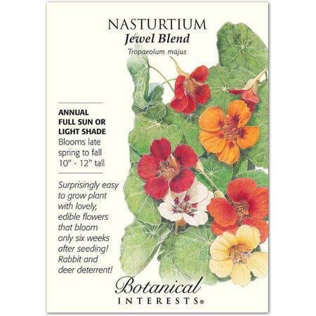 Botanical Interests Jewel Blend Nasturtium Seeds, 3