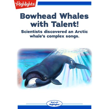 Bowhead Whale (Bowhead Whales with Talent! -)