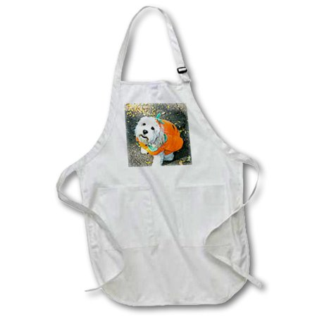 Park City Live Halloween (3dRose Pet Halloween contest at Thompkins Square Park, New York City. - Full Length Apron, 24 by 30-inch, White, With)