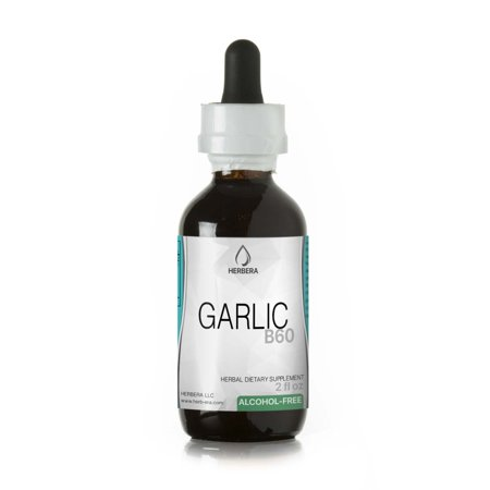 - Garlic Alcohol-FREE Herbal Extract Tincture, Super-Concentrated Organic Garlic (Allium sativum)